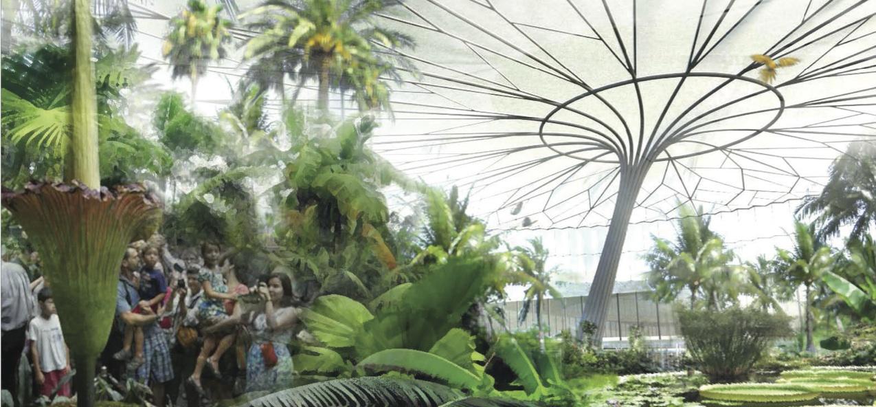 Houston Botanic Garden: Enhancement or Loss of Park Space? | OffCite ...